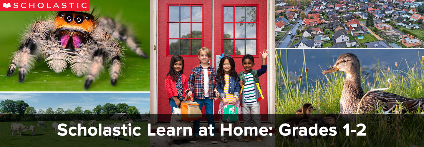 return to the Scholastic Learn at Home homepage